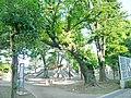 Minami-tanaka Park Nerima,Tokyo.jpg