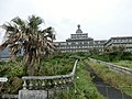 Mitsune, Hachijo, Tokyo 100-1511, Japan - panoramio (20).jpg