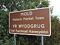 Mold sign 1.JPG