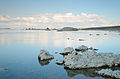 Mono Lake Old Marina August 2013 005.jpg