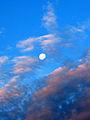 Morning Moon (719437526).jpg