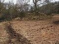 Mound beside the River Carron - geograph.org.uk - 1770170.jpg