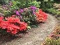 Mount Congreve gardens (supplemental ^2) - geograph.org.uk - 506655.jpg