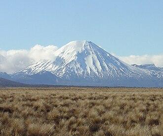 Tussock grasslands of New Zealand - Tussock in the vicinity of Mount Ngauruhoe.