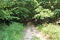 Mountain Road (Johnstown Highway) - panoramio (7).jpg