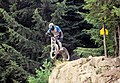 Mountain biker jumps (1115747681).jpg