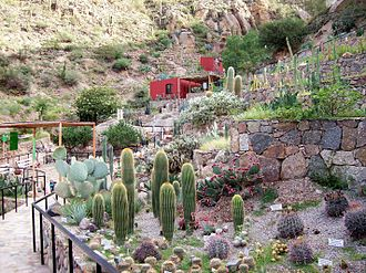 La Rioja Province, Argentina - Chirau Mita Botanical Gardens, Chilecito.