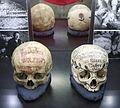Museum für Sepulkralkultur 028.JPG