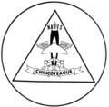NAOTS logo.png