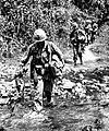 NARA 111-CCV-361-CC33835 101st Airborne soldiers crossing creek Operation Harrison 1966.jpg