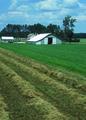 NRCSMI01010 - Michigan (4609)(NRCS Photo Gallery).tif