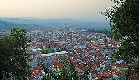 Naousa view from St Theologos hill 4.jpg