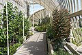 National Botanic Gardens In Glasnevin (Dublin) - panoramio (27).jpg