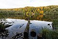 Nationalpark Jasmund Herthasee.jpg