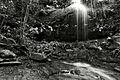 Nature's Shower (7703735234).jpg