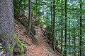 Naturschutzgebiet Feldberg (Black Forest) - Alpiner Steig am Feldberg - Bild 09.jpg