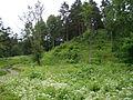 Naujosios Rėvos piliakalnis, Vilniaus rajonas 4.JPG