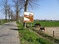 Netterdenscher Kanal PM20-17.jpg