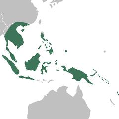 Neuwiedia distribution map.png