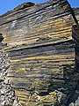 New Albany Shale (Upper Devonian; MacDonald Knob Outcrop, Bullitt County, Kentucky, USA) 8 (45901850081).jpg