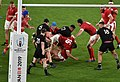 New Zealand national rugby 20191101d10.jpg
