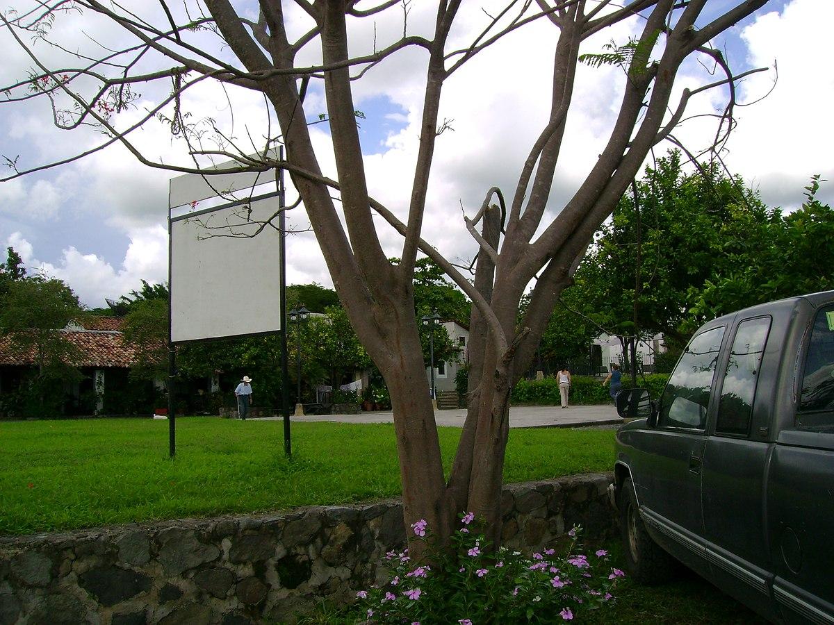 Villa Las Flores Apartments Monrovia Ca