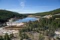 Nymph Lake YNP1.jpg