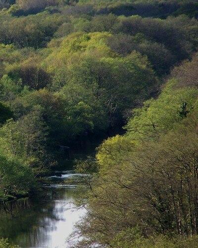 O río Miño pouco antes de pasar por Lugo