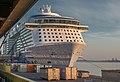 Odyssey-of-the-Seas hg.jpg
