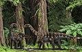 Ohmdenosaurus Reconstruction.jpg