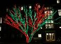 Oklahoma City Christmas Lights - panoramio - MARELBU (2).jpg