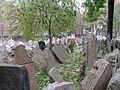 Old Jewish Cemetery, Prague, Czech Republic (73115143).jpg