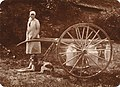 Oldershausen Marschacht Melkerin mit Milchkannen Handwagen 18. Jahrhundert bis ca 1940 Vollhof Nr. 11.jpg