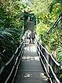 On the suspension bridge (7987410308).jpg