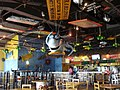 """Oranjestad Aruba """"Senor Frogs"""" - panoramio.jpg"""