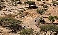 Oromia IMG 5546 Ethiopia (25929480038).jpg