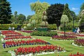 Oswestry gardens.jpg
