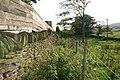 Overgrown footpath near Low Barn Farm, Carleton-in-Craven, Yorkshire - geograph.org.uk - 237761.jpg