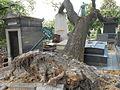 Père-Lachaise, Ride the tree (10147530163).jpg