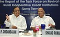 P. Chidambaram and the Union Minister of Consumer Affairs, Food and Public Distribution and Agriculture.jpg