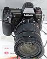 Panasonic Lumix DC-S1 27 Mar 2019c.jpg