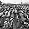 pannendak, bestaande uit holle en bolle dakpannen, tijdens restauratiewerkzaamheden - bornwird - 20329543 - rce