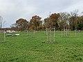 Parc Croissant Vert Neuilly Marne 15.jpg