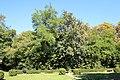 Parc Jacques-Boussard à Lardy en 2013 36.jpg