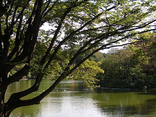 Parc Montsouris le lac