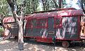 Parco di pinocchio 07 carrozza di mangiafuoco.JPG