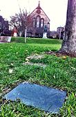 Photo of a memorial plaque installed in grass field next to trunk of tree.
