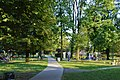 Park Milowice ( z kamieniem )