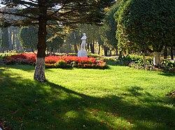 Park of Kokino, Briansk region, Russia.jpg