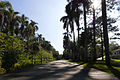 Parque Estadual Fontes do Ipiranga.jpg